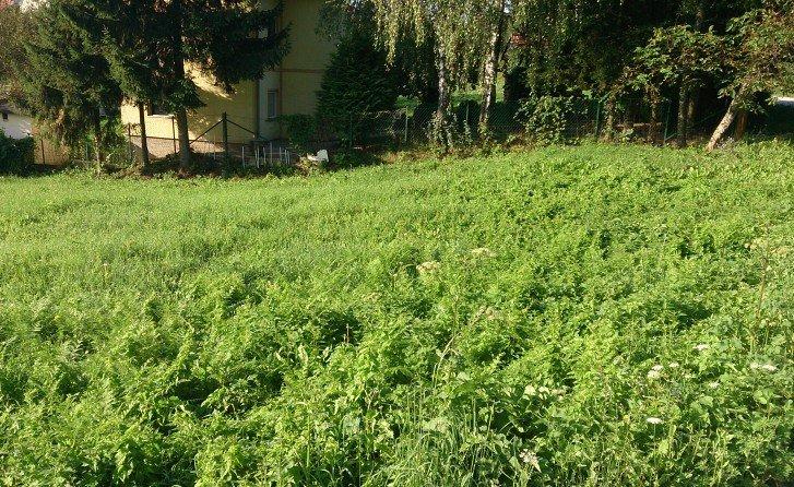 krcmarice-zemljiste